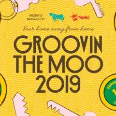 Groovin The Moo