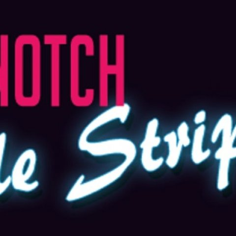 Top Notch Male Strippers
