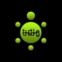 turtletheory
